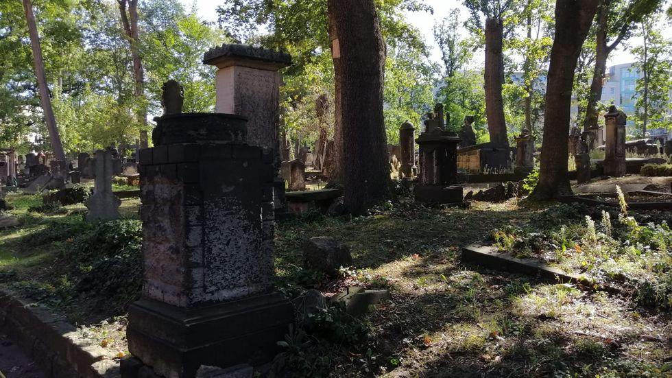 Eliasfriedhof (Foto: Redaktion)