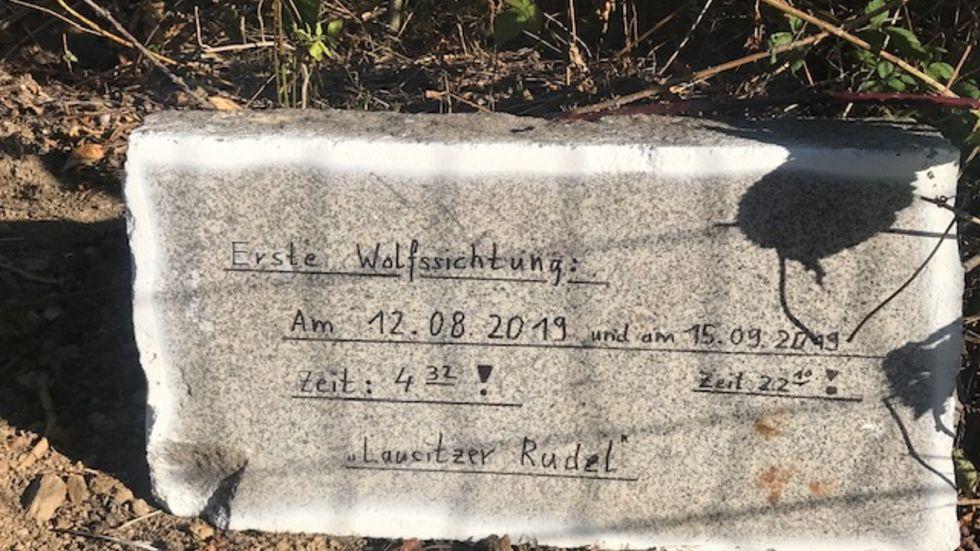 Dieser Stein mit Hinweisen zu Sichtungen von Wölfen steht im Südpark. Foto: Rocco Reichel