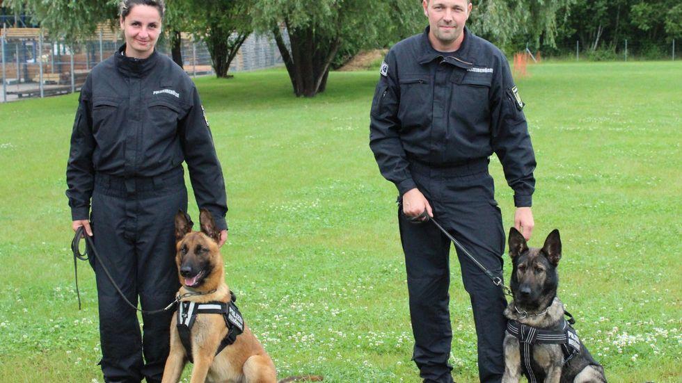 Die neuen Diensthunde des Ordnungsamtes Nina und Fido mit ihren Hundeführern